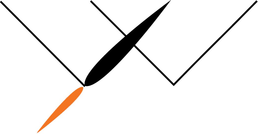 Rocketwebber